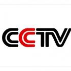 Аналоговое видеонаблюдение (CVBS)